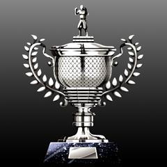 LeetWolf2's Trophy Cabinet • PSNProfiles.com